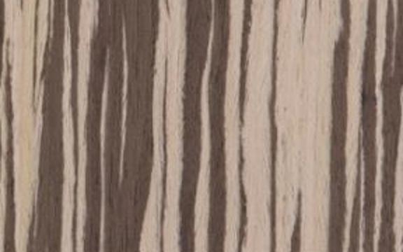 Immagine texture legno naturale Zebrano Bianco Rigato