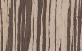 Picture of Zebrawood White Striped KDS wood finish